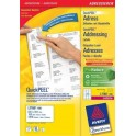 avery-l7160-100-addressing-label-1.jpg