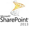 microsoft-sharepoint-standard-2013-dcal-olp-nl-1u-edu-1.jpg